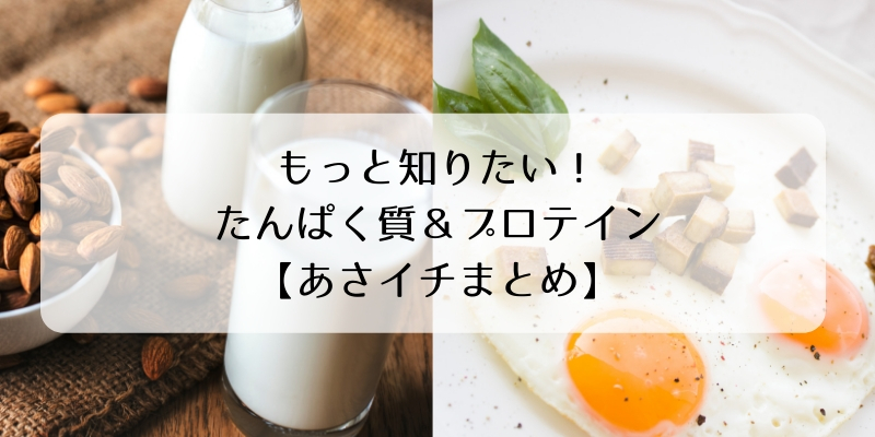 もっと知りたい!たんぱく質&プロテイン【あさイチまとめ】