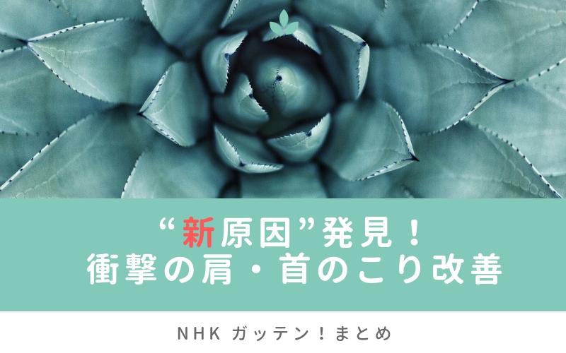"""【ガッテン!】 """"新原因""""発見!衝撃の肩・首のこり改善SPまとめ(2月13日"""