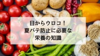 【ヒルナンデスまとめ】目からウロコ!夏バテ防止に必要な栄養の知識!(6月3日)
