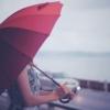 【NHKあさイチ】雨の日限定、お得情報!(6月25日)