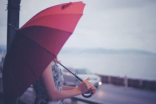 """【スッキリ!まとめ】超便利!最新トレンド""""傘""""(6月13日)"""
