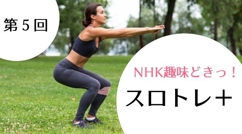 【NHK趣味どきっ!まとめ】スロトレ+(プラス)第5回 姿勢をまっすぐ!【おなか】(12月30日)
